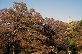 Top of Lincoln's Tomb