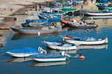 Boats moored at tourist port of Bisceglie. Apulia.