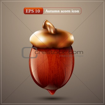 Autumn acorn icon