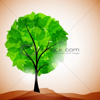 tree background