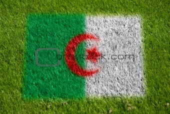 flag of algeria on grass