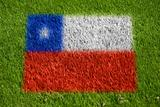 flag of chile on grass