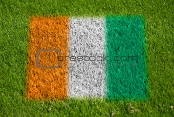 flag of cote d'ivoire on grass