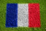 flag of france on grass
