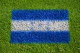 flag of honduras on grass