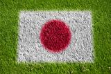 flag of japan on grass