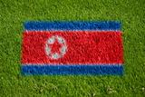 flag of korea dpr on grass