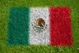 flag of mexico on grass