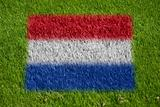 flag of netherlands on grass