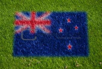 flag of new zealand on grass