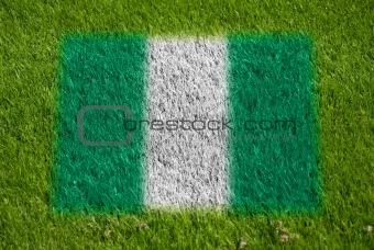 flag of nigeria on grass