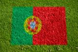 flag of portugal on grass