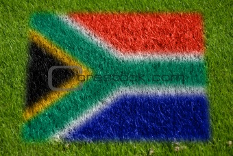flag of south africa on grass