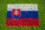 flag of slovakia on grass