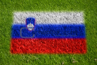 flag of slovenia on grass