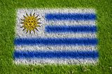 flag of uruguay on grass