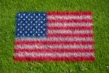 flag of usa on grass
