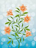 Floral pattern with a lily. Vector illustration.