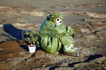 Man in chemical suit and houseplant in desert