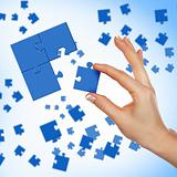 Elements of the puzzle