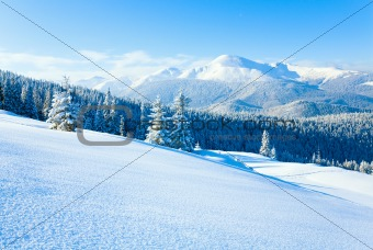 Winter Goverla Mount view (Ukraine)