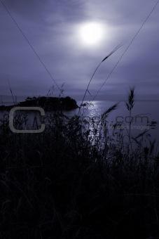 Tranquil  moonrise