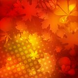 Soft warm dotted Autumn leaves