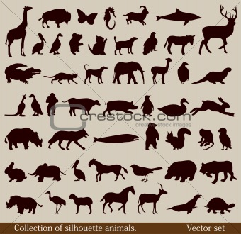 Set of diverse animal silhouettes. Vector