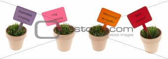 Pots of Grass with Garden Related Signs