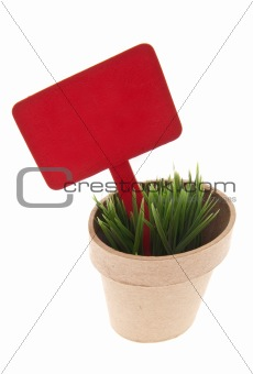 Pot of Grass with Vibrant Red Sign