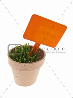 Pot of Grass with Vibrant Orange Sign