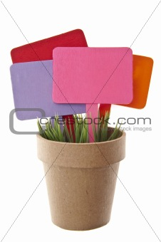 Pot of Grass with Several Blank Colored Signs