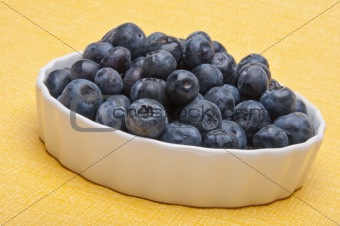 Fresh Bowl of Blueberries