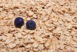 Fresh Whole Grain Oats and Blueberries Background.