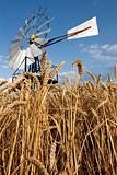 Mill n crops