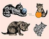 Cat series in various poses. Vector