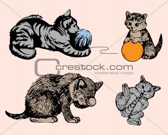Cat series in various poses. Vector