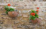 Flowerpots hanging on brickwall. Spello. Umbria.