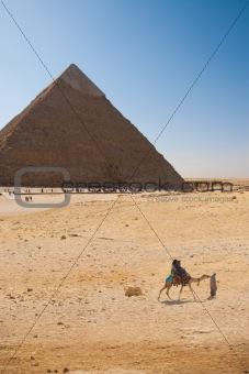Camel Ride Giza Pyramid Khafre
