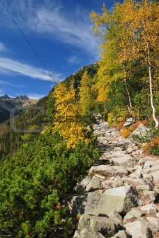 Mountain walkway