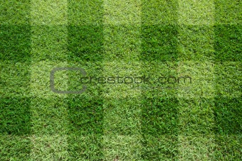 Top view of Beautiful square tone lawn