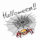 halloween spider