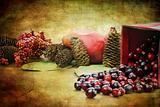 Cranberry Still Life