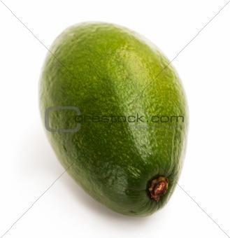 Avocado macro