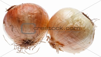Pair of Raw Onions