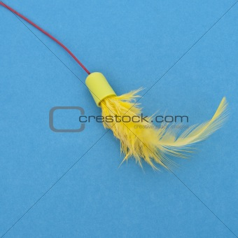 Close Up of Feathers on a Cat Toy