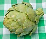 Artichoke on a Picnic Blanket 