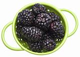 Fresh Healthy Blackberries
