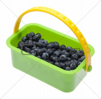 Fresh Blueberries in a Bright Green Basket