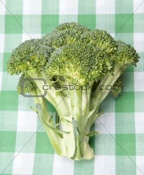 Broccoli on a Picnic Blanket
